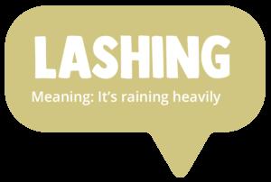 Lashing. Meaning: It's raining heavily